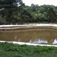 tanque de pesca