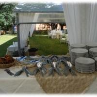 Pratos de porcelana, talheres de inox, taças, jarras e travessas... porque o seu evento merece o mel