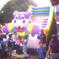 tobogã hipopotamo