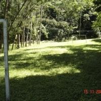 campo de bola