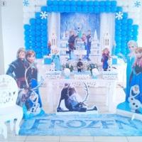 Frozen Tel 9 9134-4625