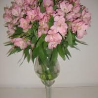 Arranjo com Flores Naturais ! Consulte-nos !