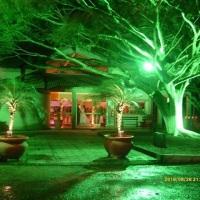 Iluminação HQi, especial para exteriores, árvores e paisagens