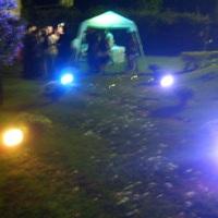 iluminação decorativa para cerimonia