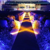 Iluminação Passarela da Noiva