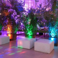 Iluminação cênica para decorar seus arranjos  http://www.djkidspe.com/