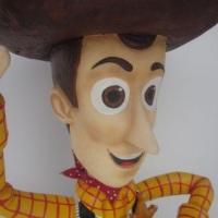 Woody - Isopor com fibra de vidro