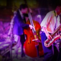 'DuCais' Casamentos - Orquestra & Coral (Formação Pop Instrumental)