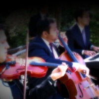 'DuCais' Casamentos - Orquestra & Coral (Dua de Cordas & Teclado)