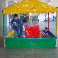 piscina de bolinhas 150,00 para 4h