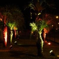 SEGILIGHT responsavel pela iluminação cênica do Café Hall - Paralela