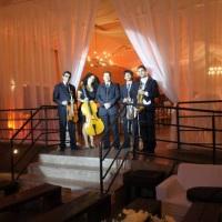 Quarteto de Cordas!!