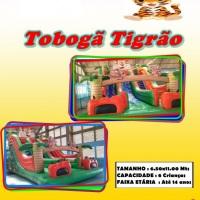 TOBOGÃ TIGRÃO (com 2 escorregadores)