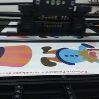 Impressão Direto em Placas