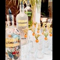 Vodka Absolut sabores para as caipiroskas.