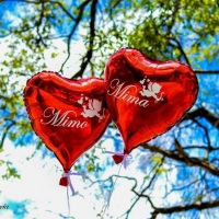 balões p ensaios fotograficos
