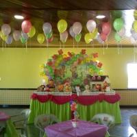 Festa infantil decoração do Cocoricó para meninas