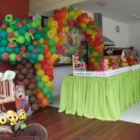 cenário festa infantil em itu cocoricó - Indy festas