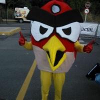 Personagem Angry Bird confecção de mascotes e animação