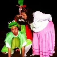 A PRINCESA E O SAPO - Premiado no Festival Nacional de Espetáculo Infantil de Mogi das Cruzes 2010.
