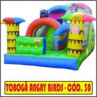 Tobogã Angri birds