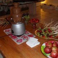 cascata de chocolate c/ frutas no palito