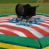 touro importado com velocidade para crianças e adultos
