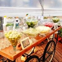 Bar carrinho rústico com rodas de bicicleta