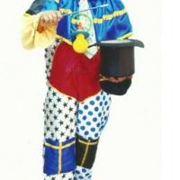 Palhaço e mágico Ronaldy