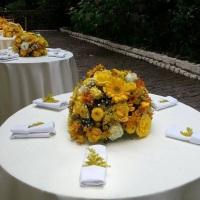 Aluguel de toalha redonda branca com mesa redonda para 6 pessoas e cadeira de ferro branca
