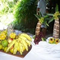 mesa tropical