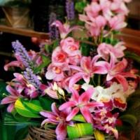 Arranjo com lírios r orquídeas