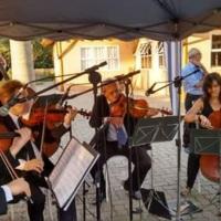 Sonorização e Microfonação Quinteto de Cordas de Campinas. (Casamento Realizado no Salão Paraíso)