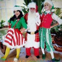 Papai Noel e duendes