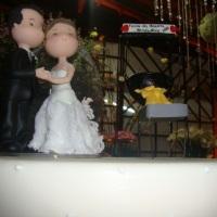 Casamento no Sitio Coqueiros em Viana