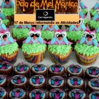 Cupcakes e Pão de Mel Coruja