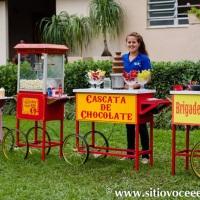 Carrinhos de Algodão Doce, Pipoca, Cascata de Chocolate e Brigadeiro no Tacho