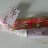 Lembrancinha escova e pasta de dentes personalizado para festa do pijama.
