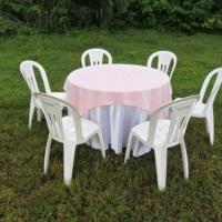 mesa red.toalha branca e rosa