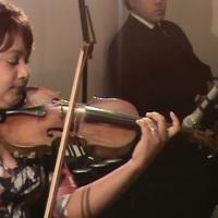 Violinista em Show de Tango.