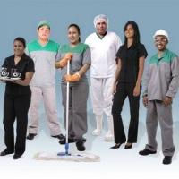 Colaboradores eficientes que fazem a diferença na qualidade dos serviços
