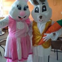 Coelhos da Pascoa
