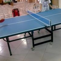 Ping-pong oficial R$ 120 a diária.