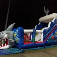Tobogã Tubarão