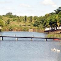 Lagoa com rio perene
