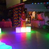 Festa Temática Tropical